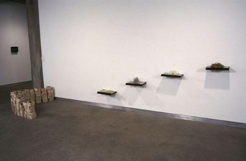 Metamorphosis #108 Wood, wax, soap, Plexiglas 2005