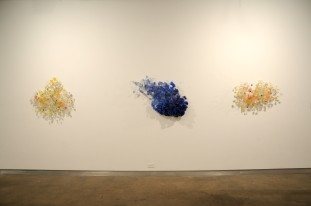 Coming, Senility, and Bloom Resin, wire 2011